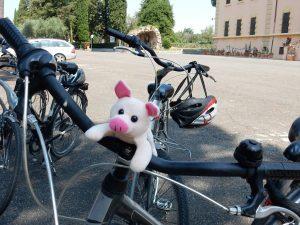 Paul Patrick auf dem Fahrrad